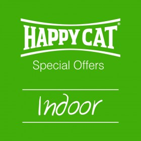 indoor cat offers